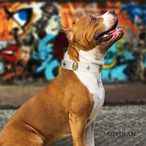 Amstaff remarkable natural genuine leather dog collar for easy wearing