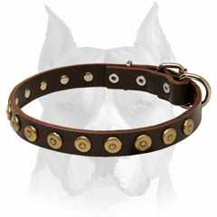 Extra durable leather dog collar with circles decoration for Amstaff