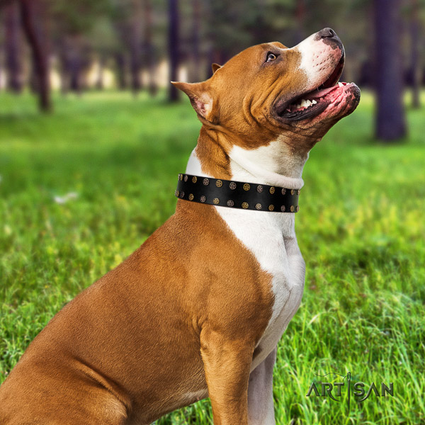 Amstaff handmade natural genuine leather dog collar for easy wearing