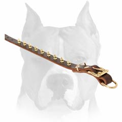 Timeproof leather dog collar with brass spikes design