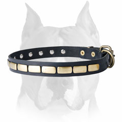 Beautiful design of this leather dog collar will make your dog look     stylish and fancy