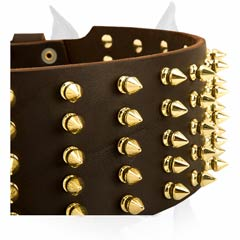 Brilliant wide leather Amstaff spiked dog collar