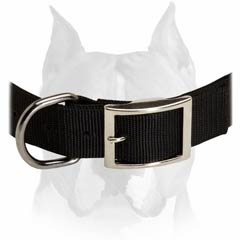 All Year Round Nylon Collar For Amstaff