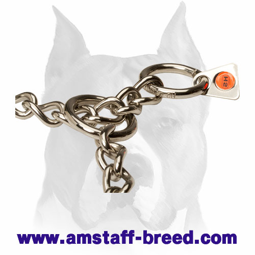 Extra Durable Choke Collar for Amstaff