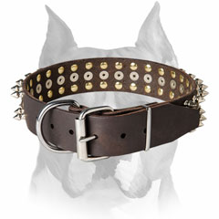 Nickel-plated buckle pure leather Amstaff breed collar