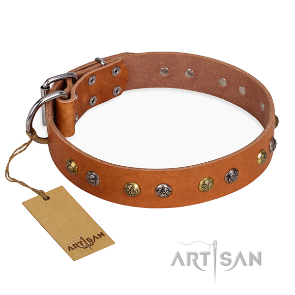 Daily use embellished dog collar with rust-proof traditional buckle