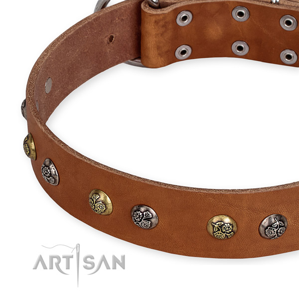 Genuine leather dog collar with exquisite reliable studs