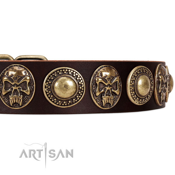 Full grain leather dog collar with decorations for everyday use