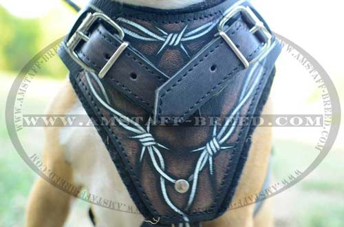 Top quality leather Amstaff painted dog harness