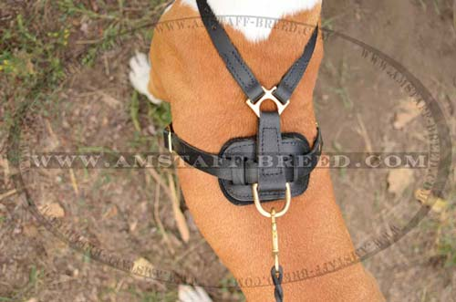 Totally leather dog harness