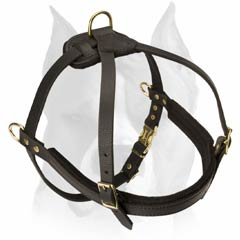 Leather harness for pulling