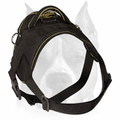 Professional nylon pulling harness for Amstaff