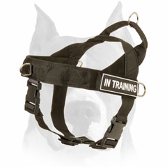 Durable multi-task harness for American Staffordshire