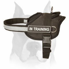 All-weather nylon harness for Amstaff