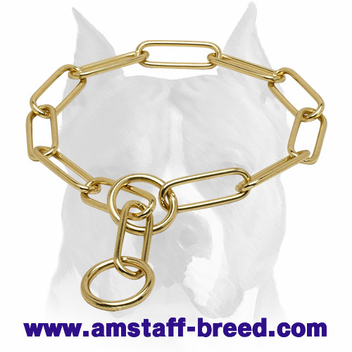 """Chain Trainer"" Amstaff Chain Dog Collar Made of Brass"
