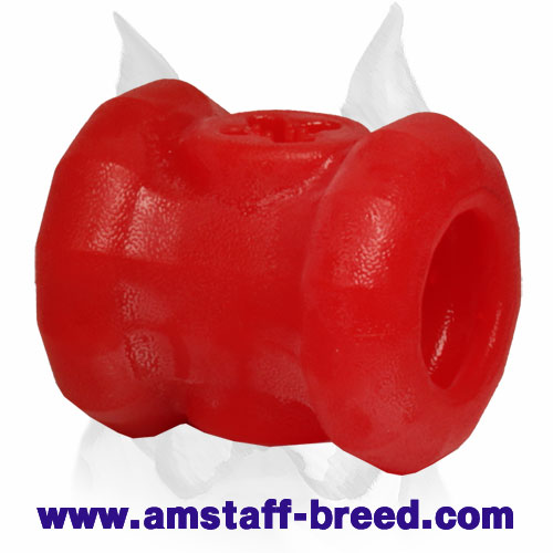 'Yammy Bobbin' Treat Holder for Amstaff Chewing