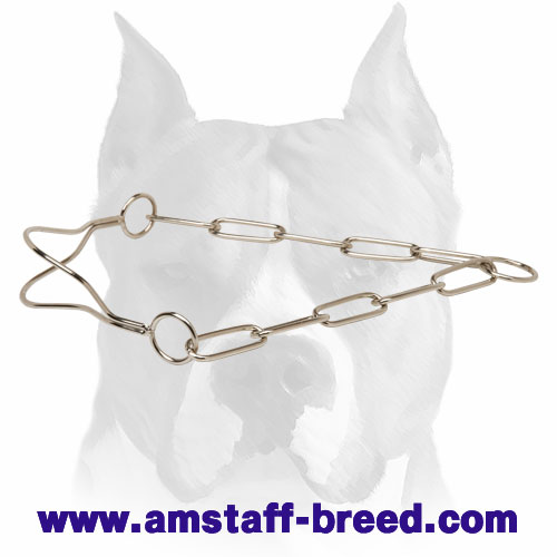 Amstaff High-Quality Chrome Plated Show Dog Collar