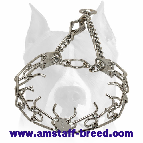 Amstaff Dog Pinch Collar with Swivel and Small Quick Release Snap Hook