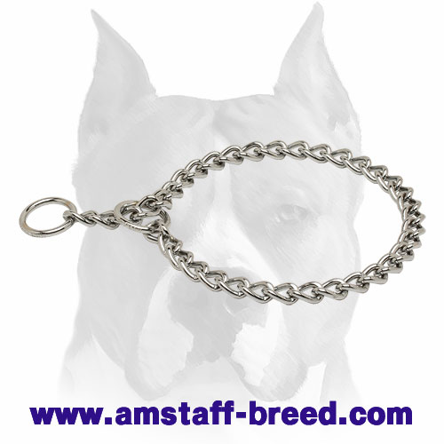 Amstaff Chrome Plated Choke Dog Collar for Training and Behavior Correction