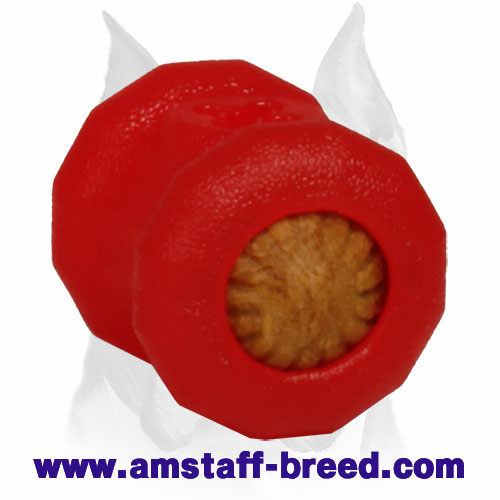 Amstaff Fire Plug Dog Toy for Chewing