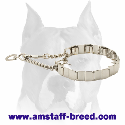 Stainless Neck Tech Dog Collar for Amstaff