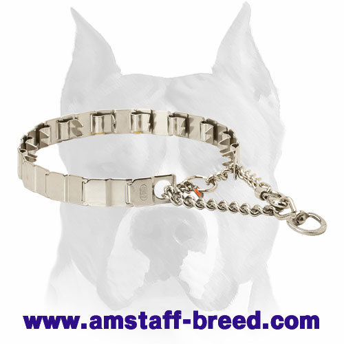 Amstaff Stainless Steel Prong Collar for Obedience Training - Click Image to Close