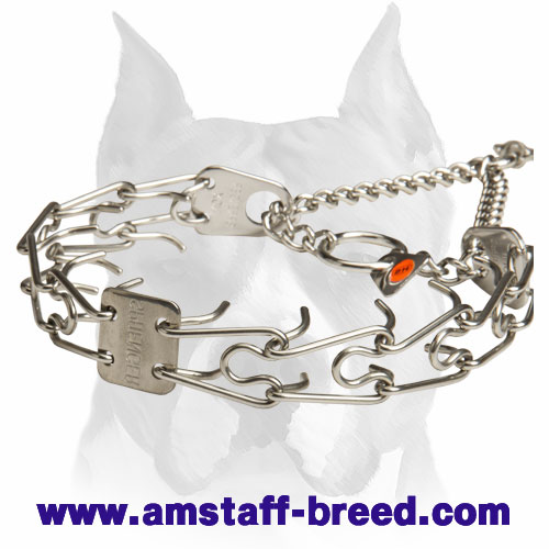 Amstaff Pinch Collar Made of Stainless Steel