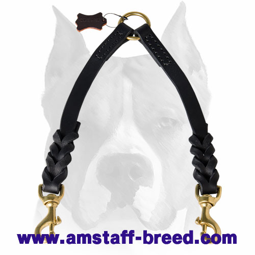 Amstaff Braided Leather Coupler Leash for 2 Dogs