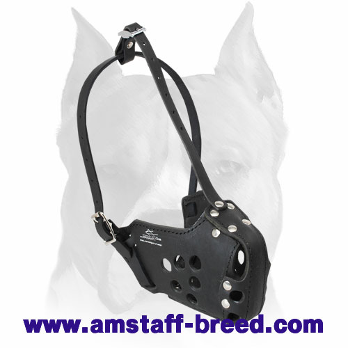 Quality Amstaff Attack / Agitation Leather Dog Training Muzzle