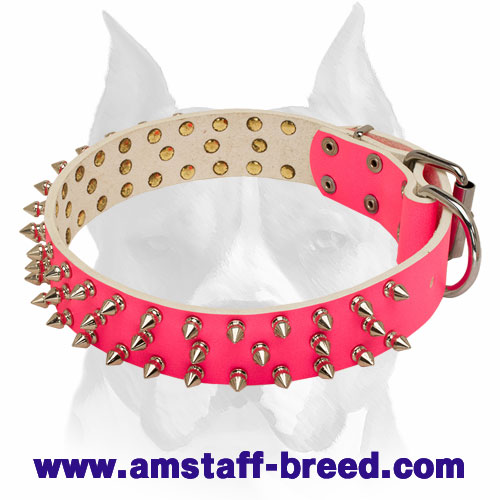 Amstaff Spiked Pink Leather Female Dog Collar