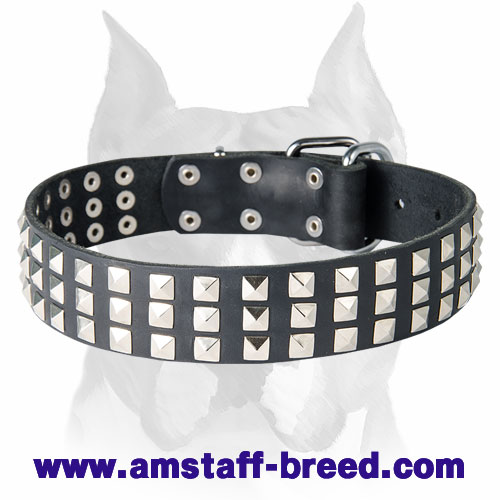 Amstaff Nickel Pyramids Leather Dog Collar for Walking and Basic Training