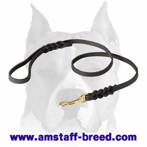 Amstaff Leather Dog Leash with Braids