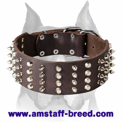 Amstaff Leather Dog Collar with Incredible Decorations - Click Image to Close