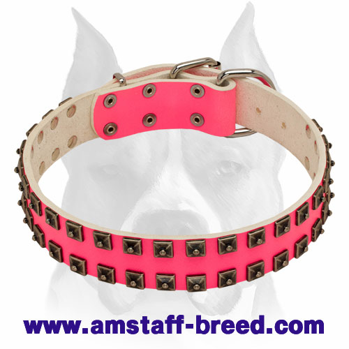 Amstaff 'Caterpillar' Pink Leather Dog Collar with Adjustable Buckle