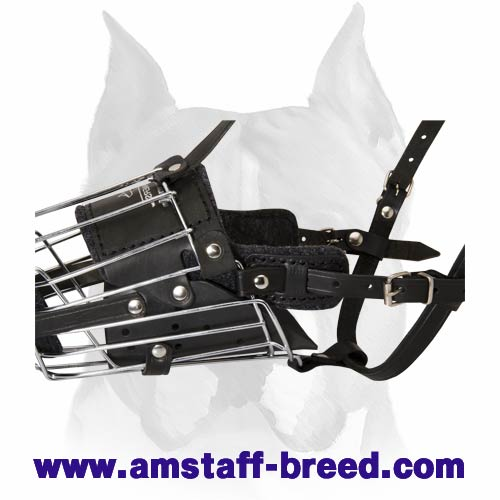 'No Mash' Law-and-Order Wire Cage Muzzle for Amstaff