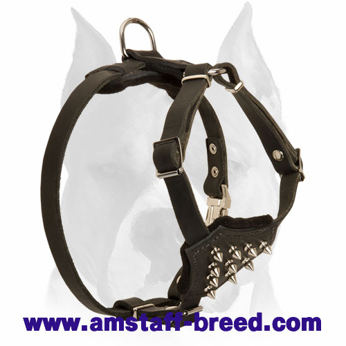 Amstaff Quality Spiked Chest Leather Dog Harness for Puppies