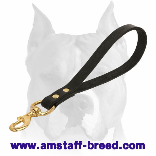 Strong and short leather dog leash with brass hardware for Amstaff