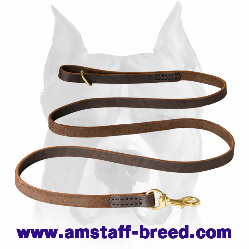 Amstaff leather dog leash with rust-resistant parts