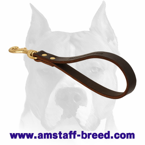 Durable leather dog leash with rust-proof hardware for Amstaff