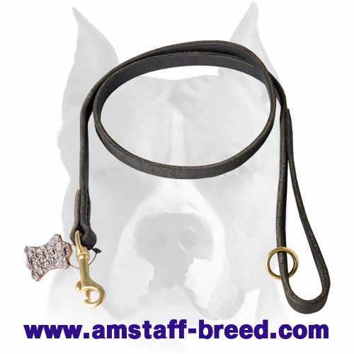 Amstaff leather dog leash with rust-proof hardware