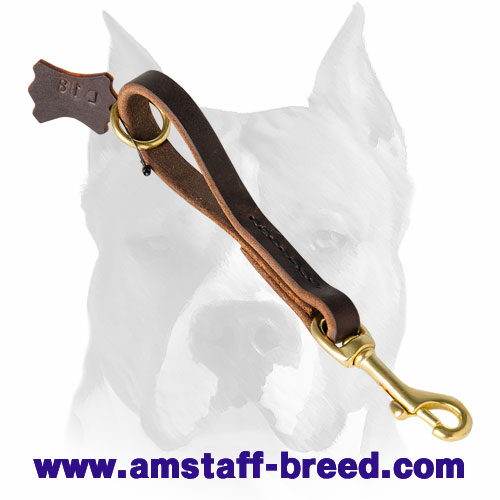 Amstaff natural materials leather dog leash with corrosion-free fittings