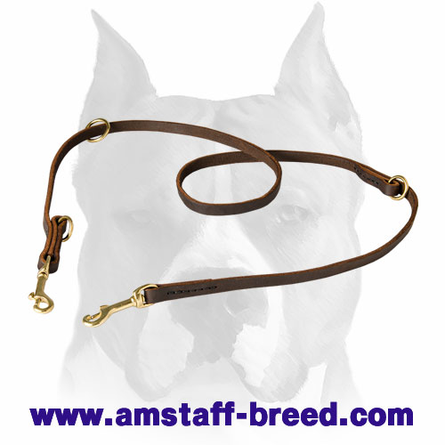 Amstaff pure leather dog leash for walking and training