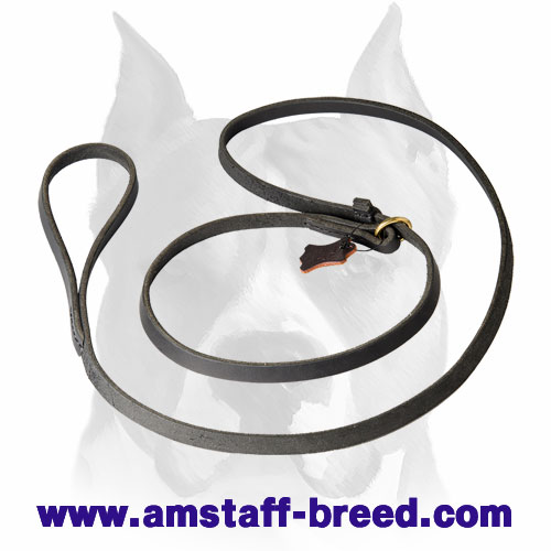 Amstaff leather dog choke collar with leash
