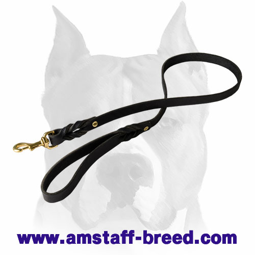 Leather dog leash with brass hardware for walking with  Amstaff