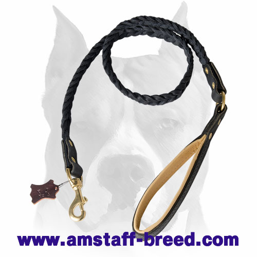Leather dog leash with soft handle for Amstaff