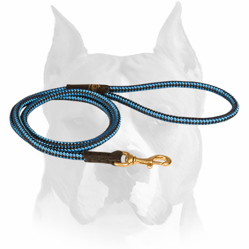 Amstaff nylon dog leash