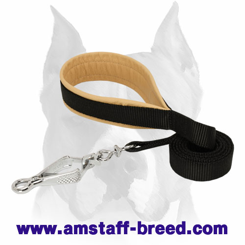Nylon Amstaff leash with HS snap hook