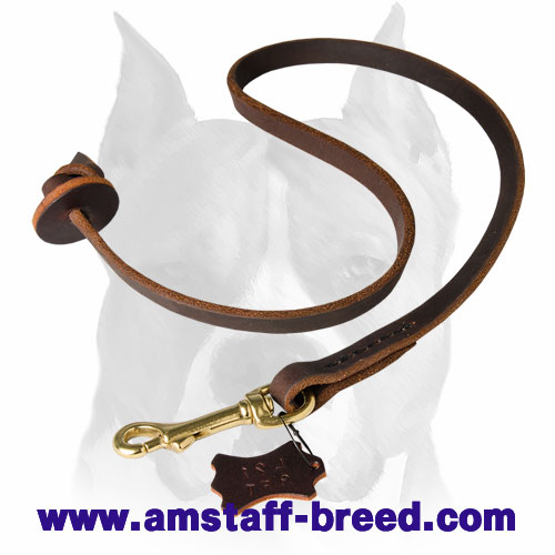 Professional leather dog leash for Amstaff