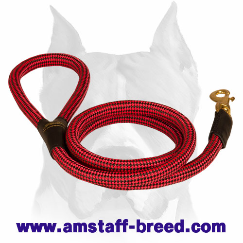 Nylon dog leash with corrosion-free fittings for Amstaff