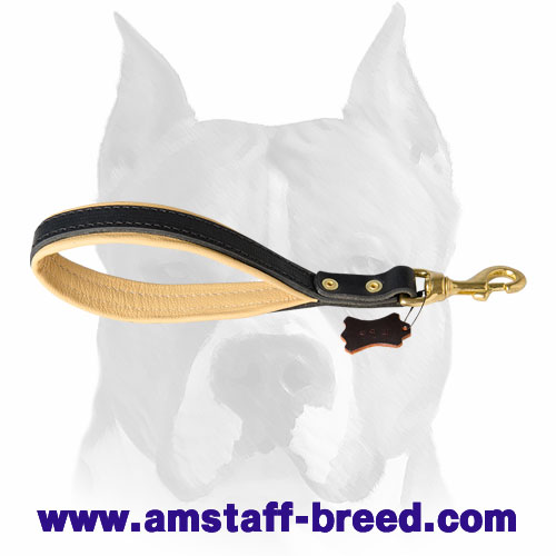 Amstaff pure leather short dog leash for training and walking
